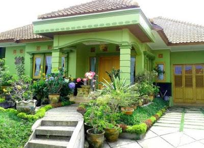 desain rumah model kampung hijau