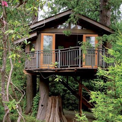 foto rumah pohon sederhana