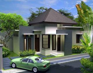 rumah mewah minimalis 1 lantai hemat biaya